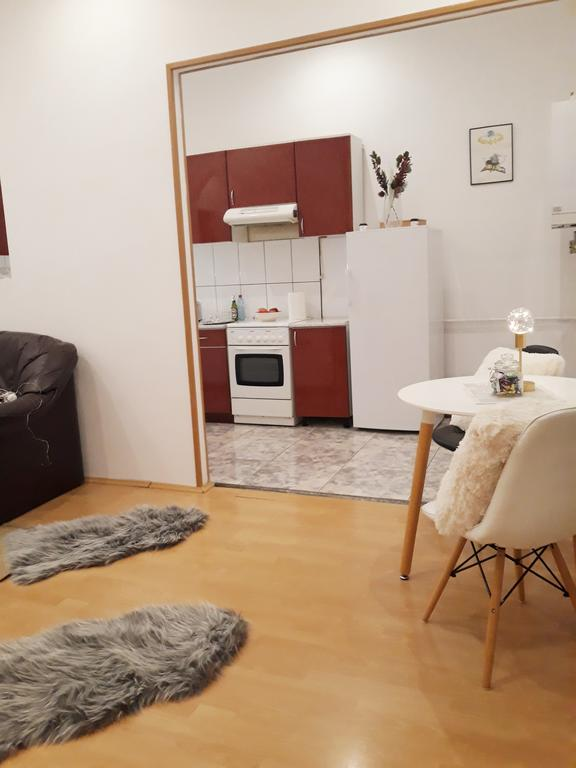 Belle Vue Ultracentral Apartments Timișoara