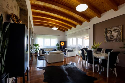 Modern Rooftop Penthouse Timișoara
